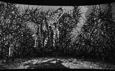 7 - 76186_representation-de-la-metamorphose-le-3-mars-2011-a-l-opera-de-lille